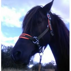 Ohlávka s neoprenem vel 1 Pony