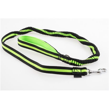 Leash with amortizer, 2x carabine